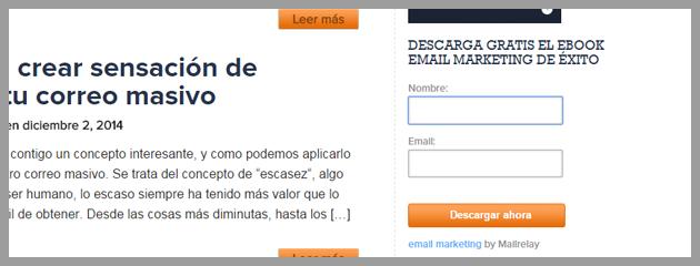 formularios-email-marketing-multiidioma-7