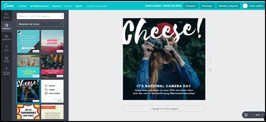 newsletter premium