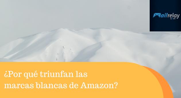 ¿Por qué triunfan las marcas blancas de Amazon?