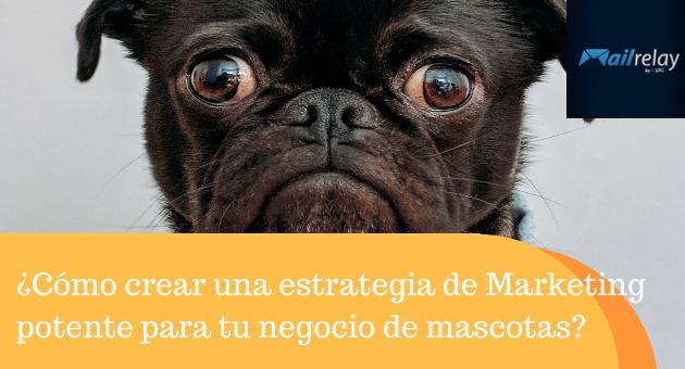 ¿Cómo crear una estrategia de Marketing potente para tu negocio de mascotas?
